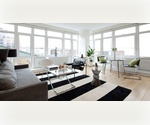 Prime Williamsburg Waterfront Luxury Rental -- Bedford L Train -- Full Amenities --1 Bedroom