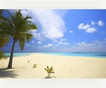 Cayman Islands- Grand Cayman: 14,307 sq ft Lake View Lot or sale- Most Beautiful Beach in the Caribbean